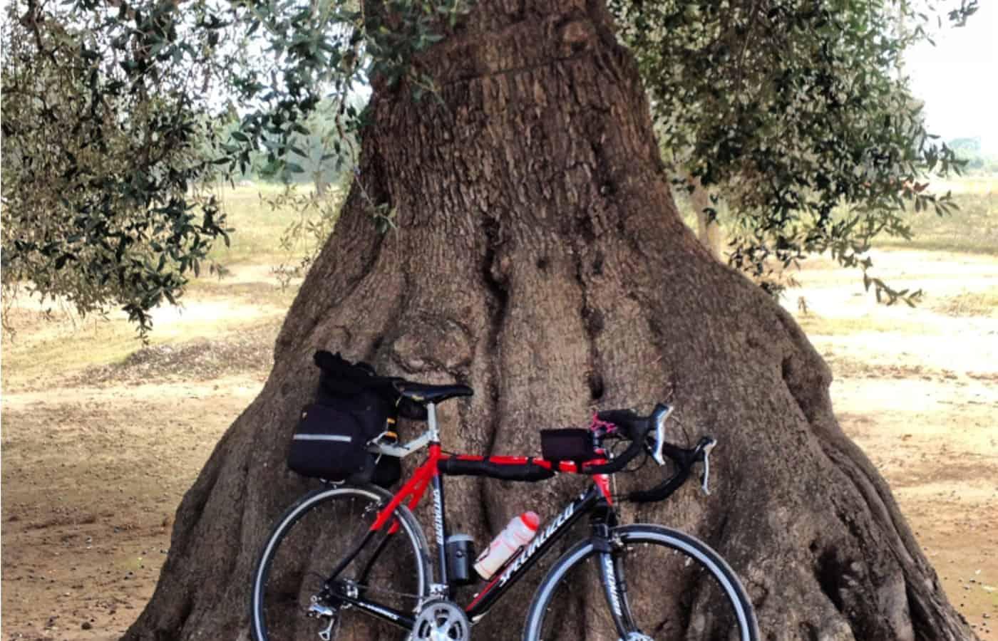Salento in bicicletta da corsa